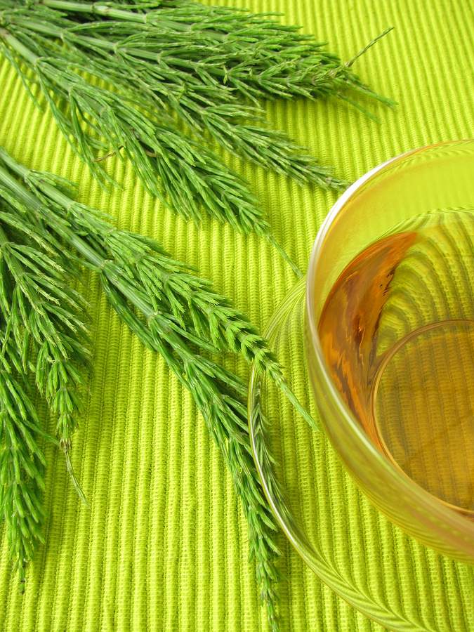 how to get rid of hemorrhoids with horsetail tea