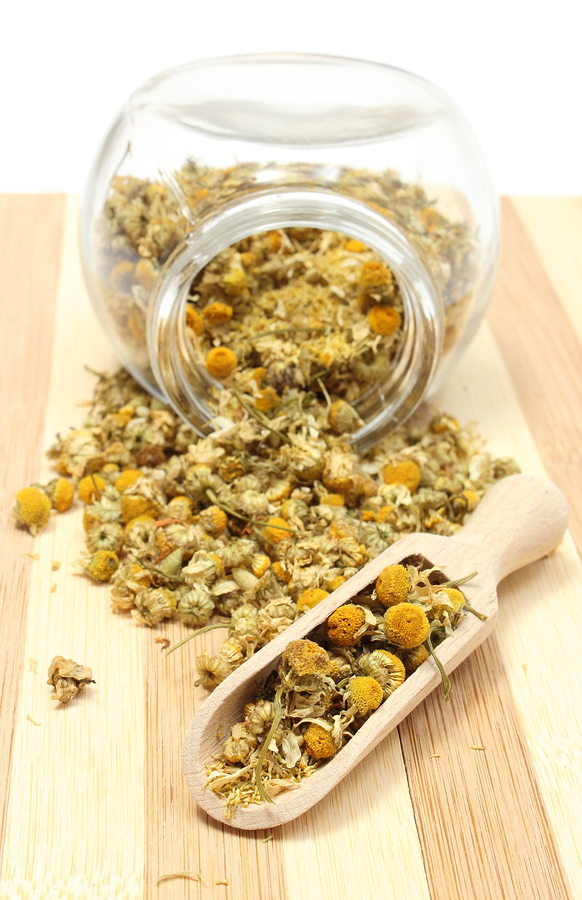 Dried Chamomile used to make a sore throat poultice