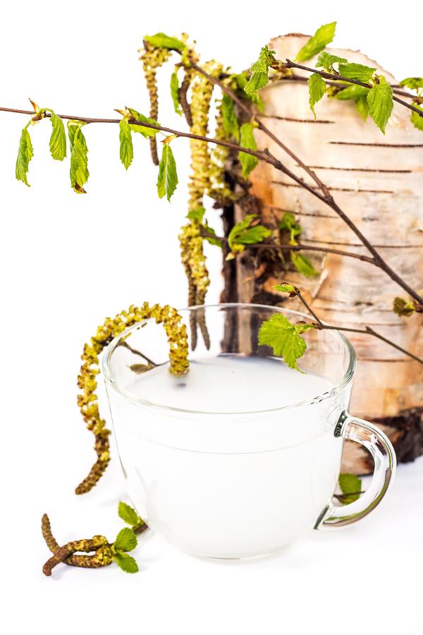 Slippery elm for sore throat remedy