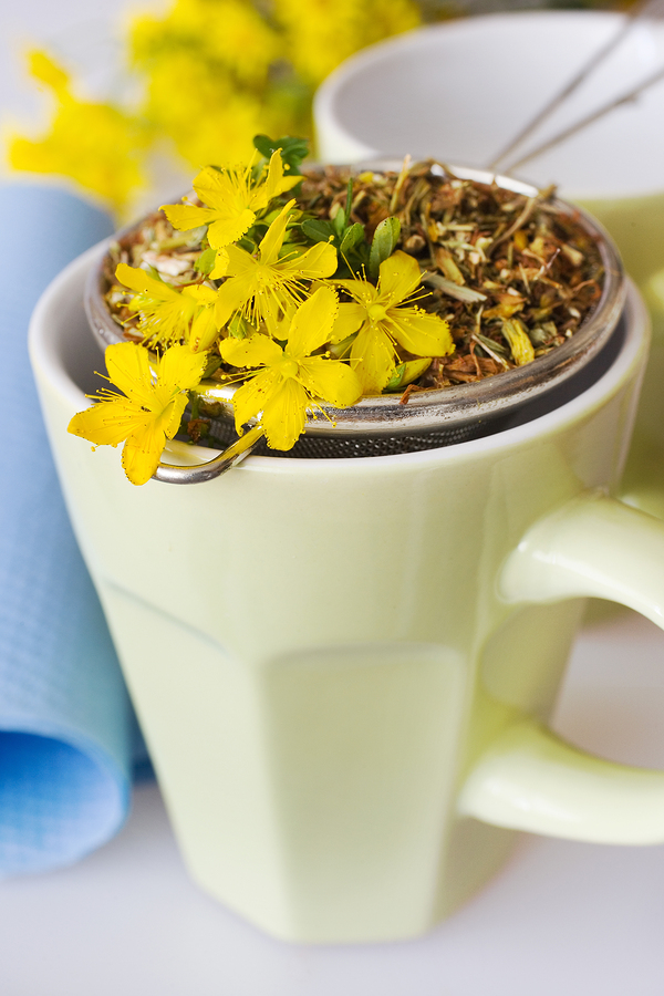 St. John's Wort tea as home remedy for gingivitis