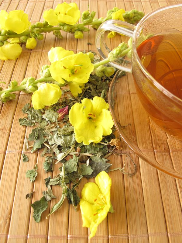 Tea with mullein flowers as cough remedy