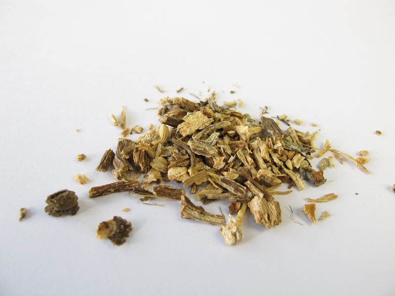 echinacea root for acne scars