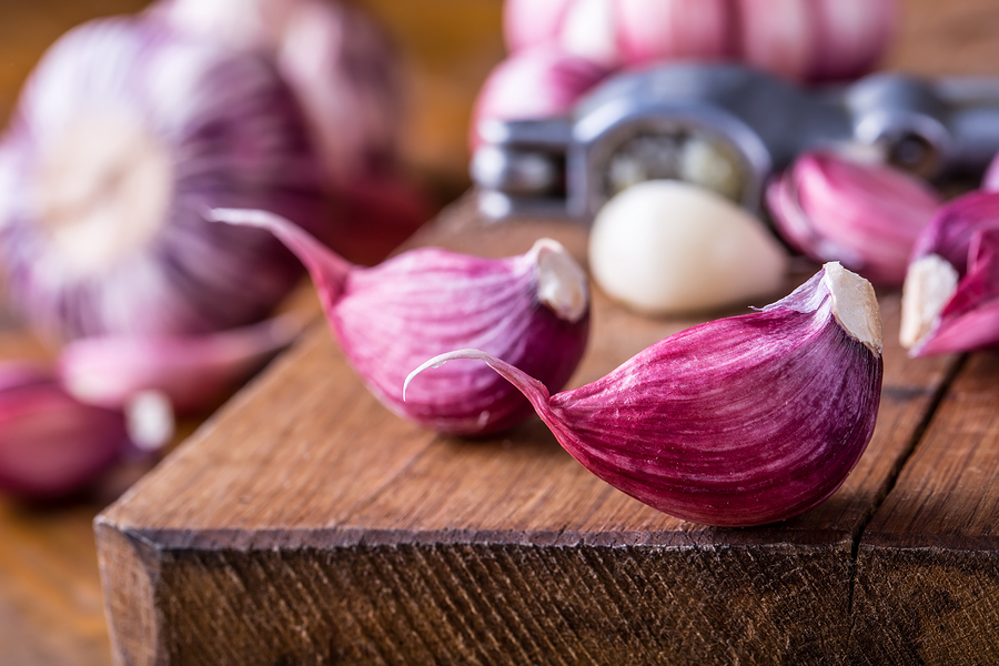 garlic for head lice