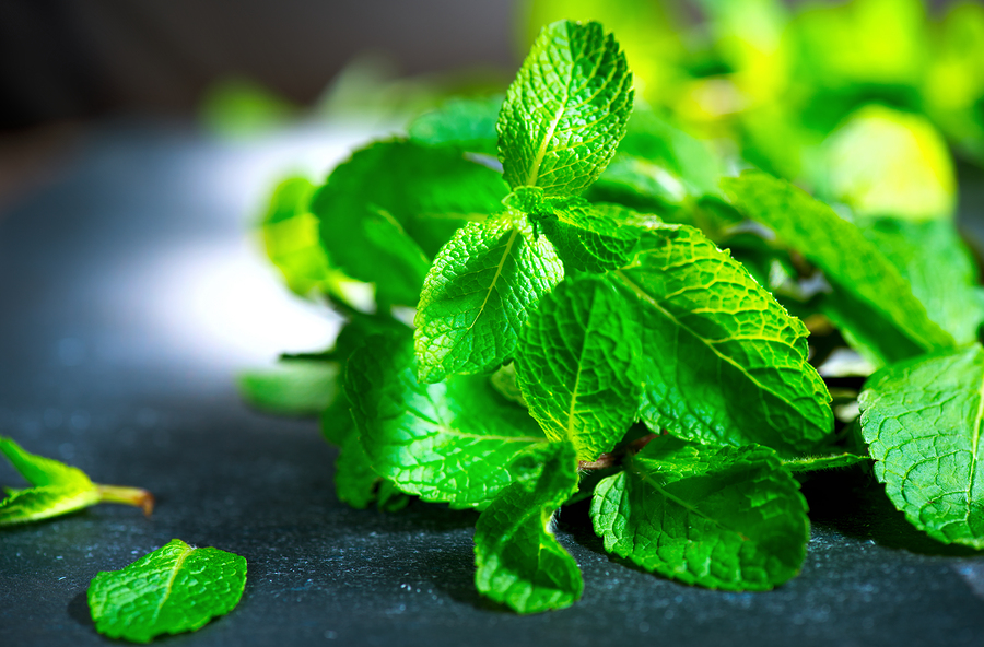 toothache home remedies from peppermint