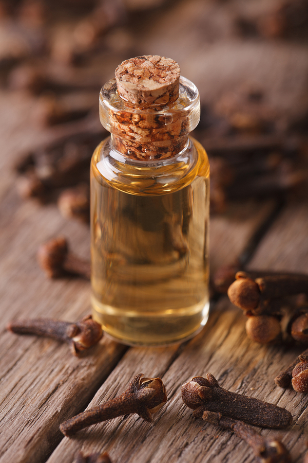 Oil of cloves which help to get rid of scabies