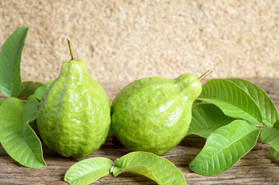 guava and guava leaves used to get rid of vaginal odor