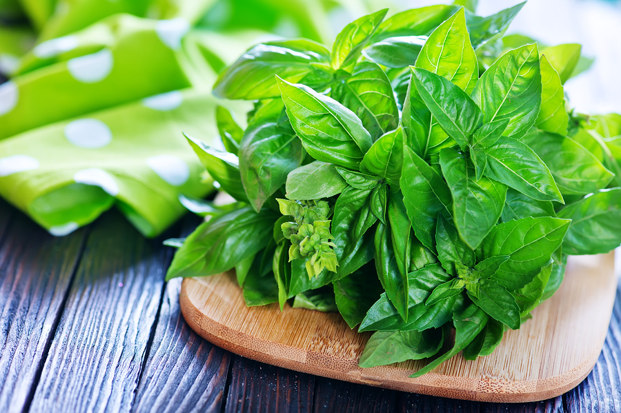basil to get rid of garlic breath