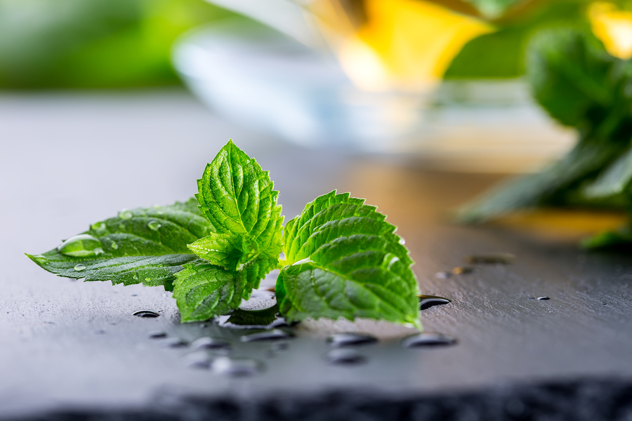 mint leaves helping to get rid of garlic breath