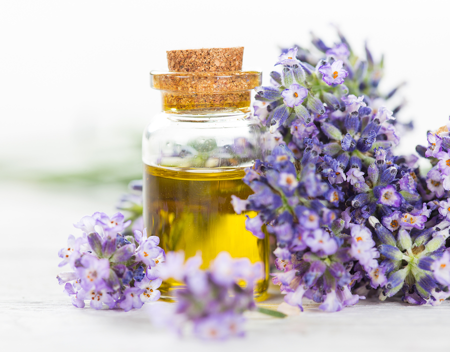 Lavender essential oil for headaches