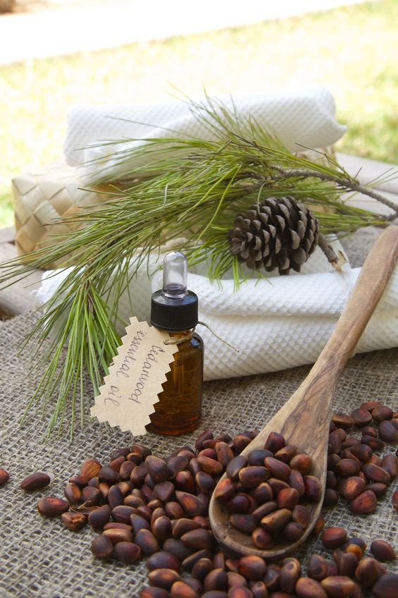 cedarwood essential oil for headaches