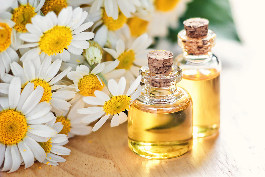 chamomile essential oil for headaches