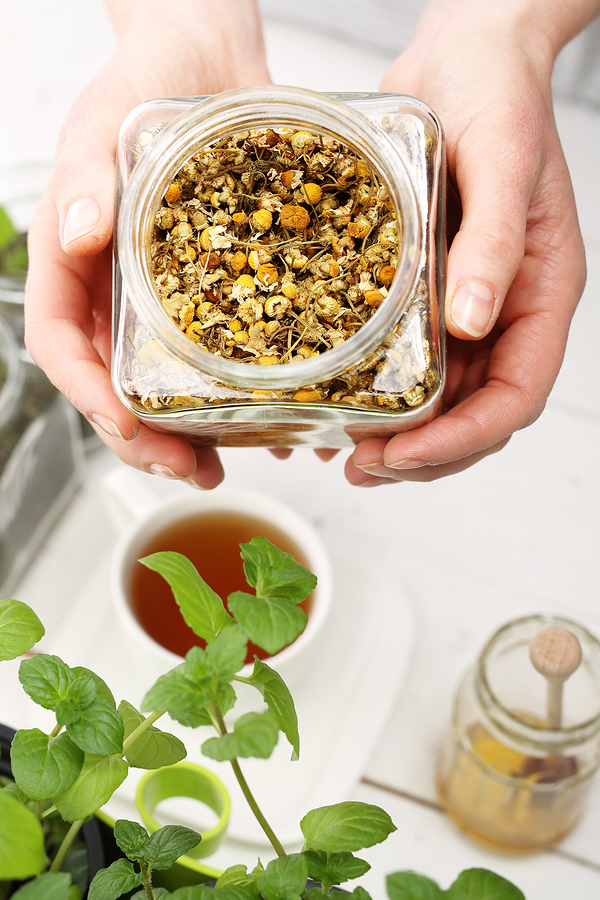 chamomile tea as headache remedy