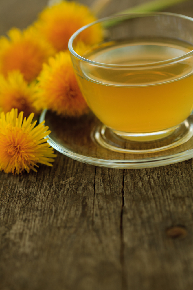 dandelion tea - home remedies for UTI