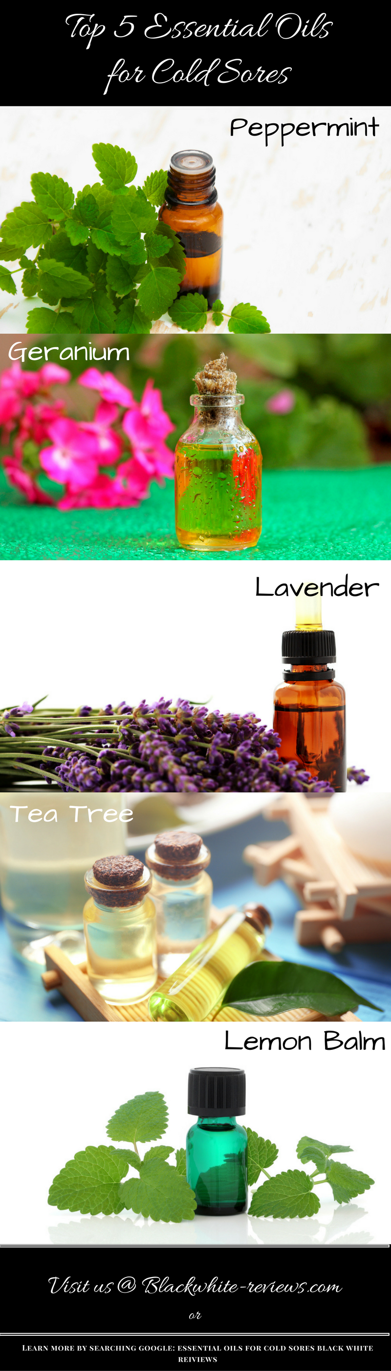 essential oils for cold sores - infographic