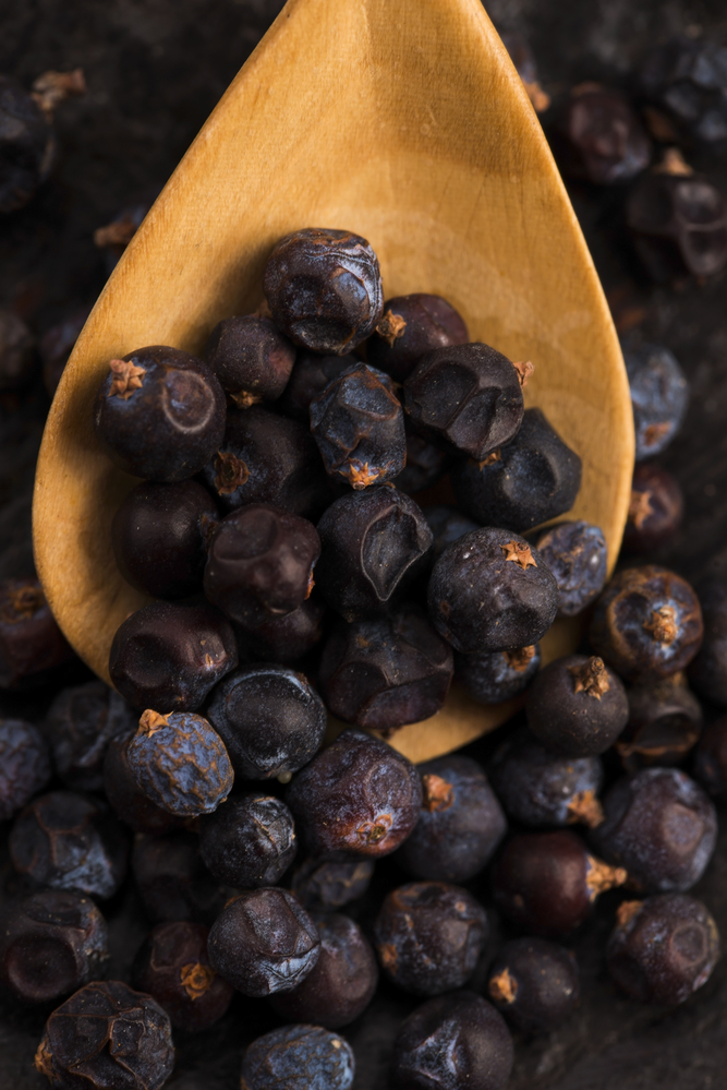 juniper berries - home remedies for UTI